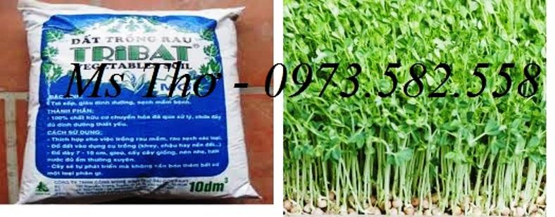 Đất tribat trồng rau mầm 10dm gía 60.000đ