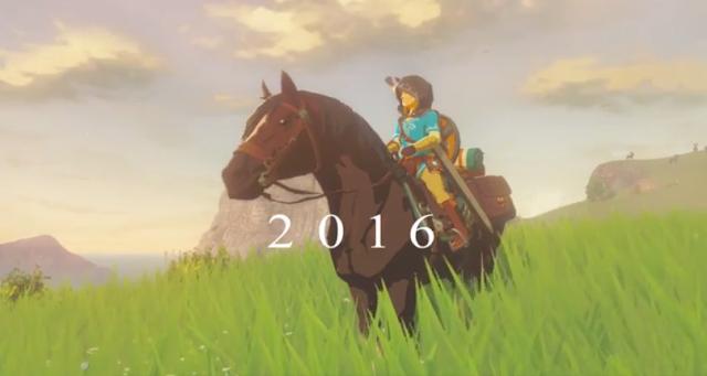 Legend of Zelda Wii U 2016 Link Epona hood burqa