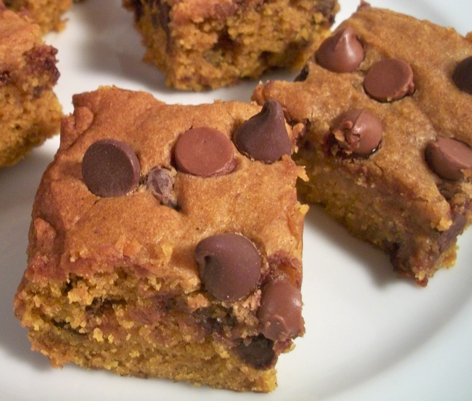 Brooke Bakes : Pumpkin Chocolate Chip Squares