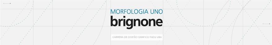 Catedra Brignone / Morfologia 1