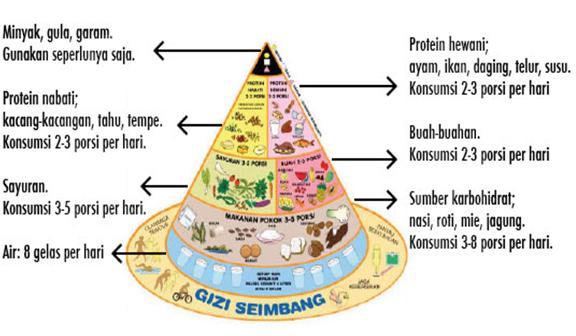 Bahan Makanan yang Mengandung Gizi