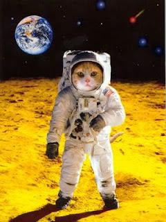 Puppy Love Preschool: Pretty Pictorial: Astronaut Cats
