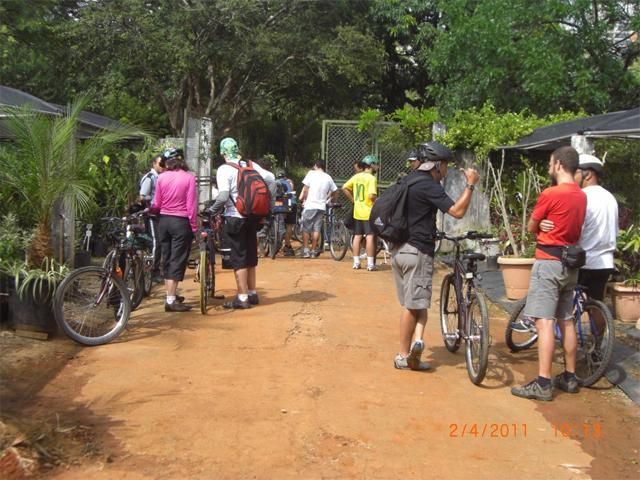 Grupo de ciclistas atravessa a cidade plantando mudas em parques e praças