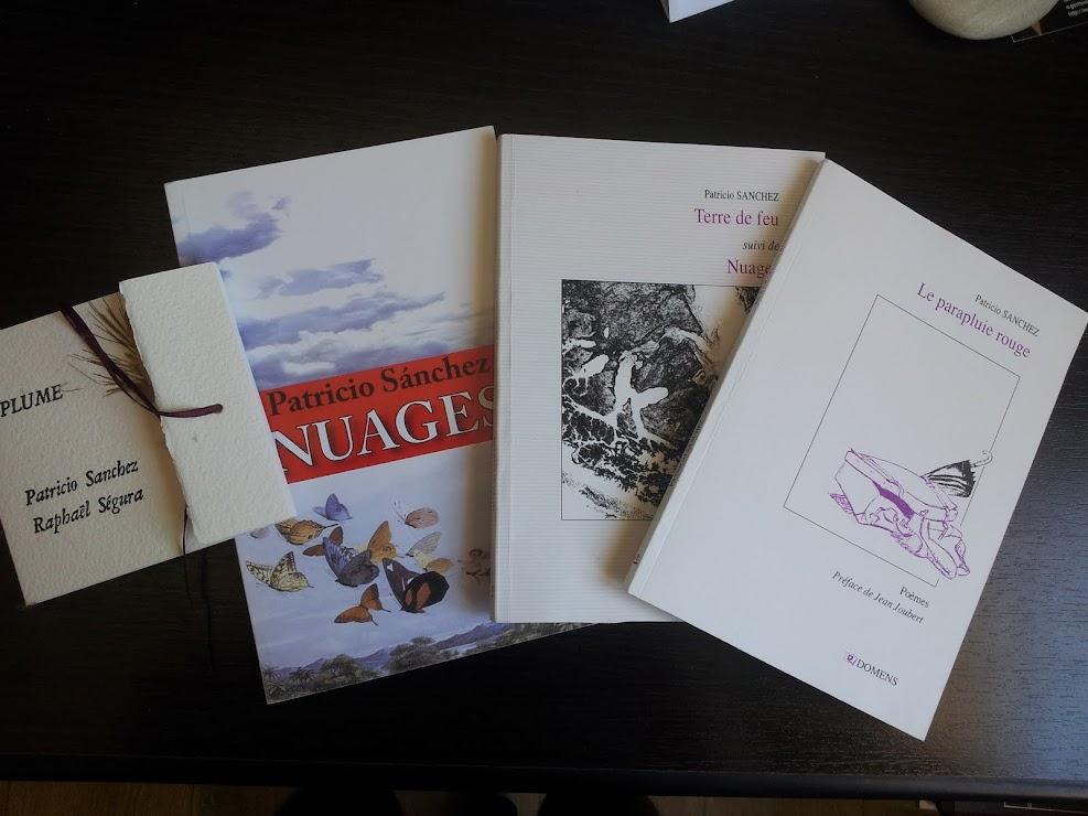 Livres Patricio SANCHEZ-ROJAS, Plume, Nuages, Terre de feu, Le parapluie rouge (France).