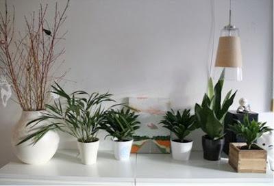 Decorando con elementos muy naturales decoraci n de Elementos de decoracion de interiores
