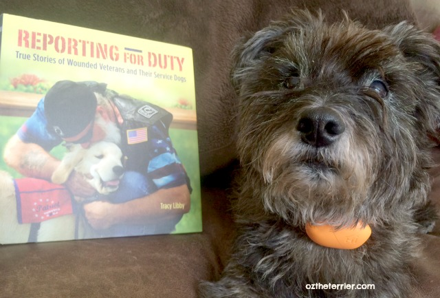 Oz the Terrier received a copy of author Tracy Libby's Reporting For Duty: True Stories of Wounded Veterans and Their Service Dogs
