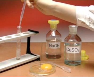 biuret reagent Biuret found in: biuret, reagent, biuret reagent solution, per gornall, bardawill and david, biuret reagent ts, (usp test solution), biuret, [for.