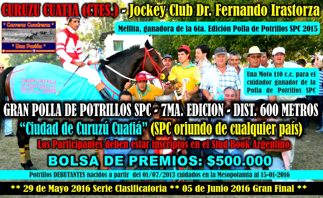 C. CUATIA - POLLA 2016