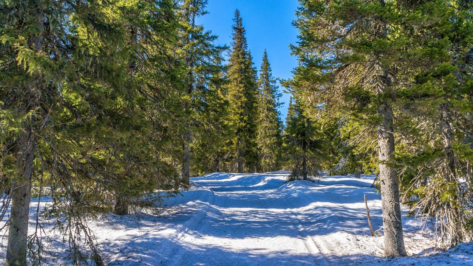 Syötteen kansallispuisto-2014-04-20