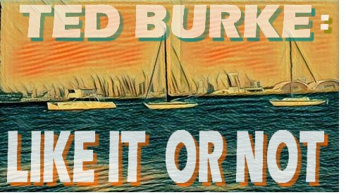 Ted Burke LIKE IT OR NOT