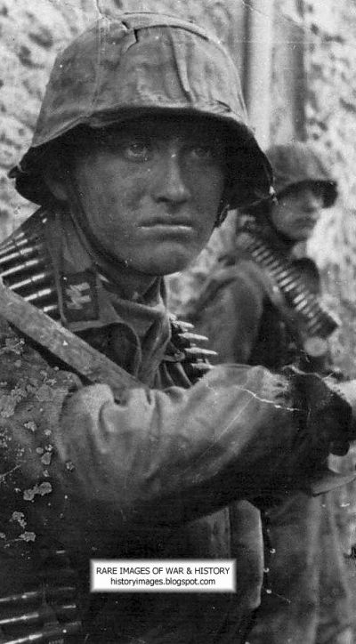 Waffen SS:  Elite Fighting Machine (LARGE IMAGES)