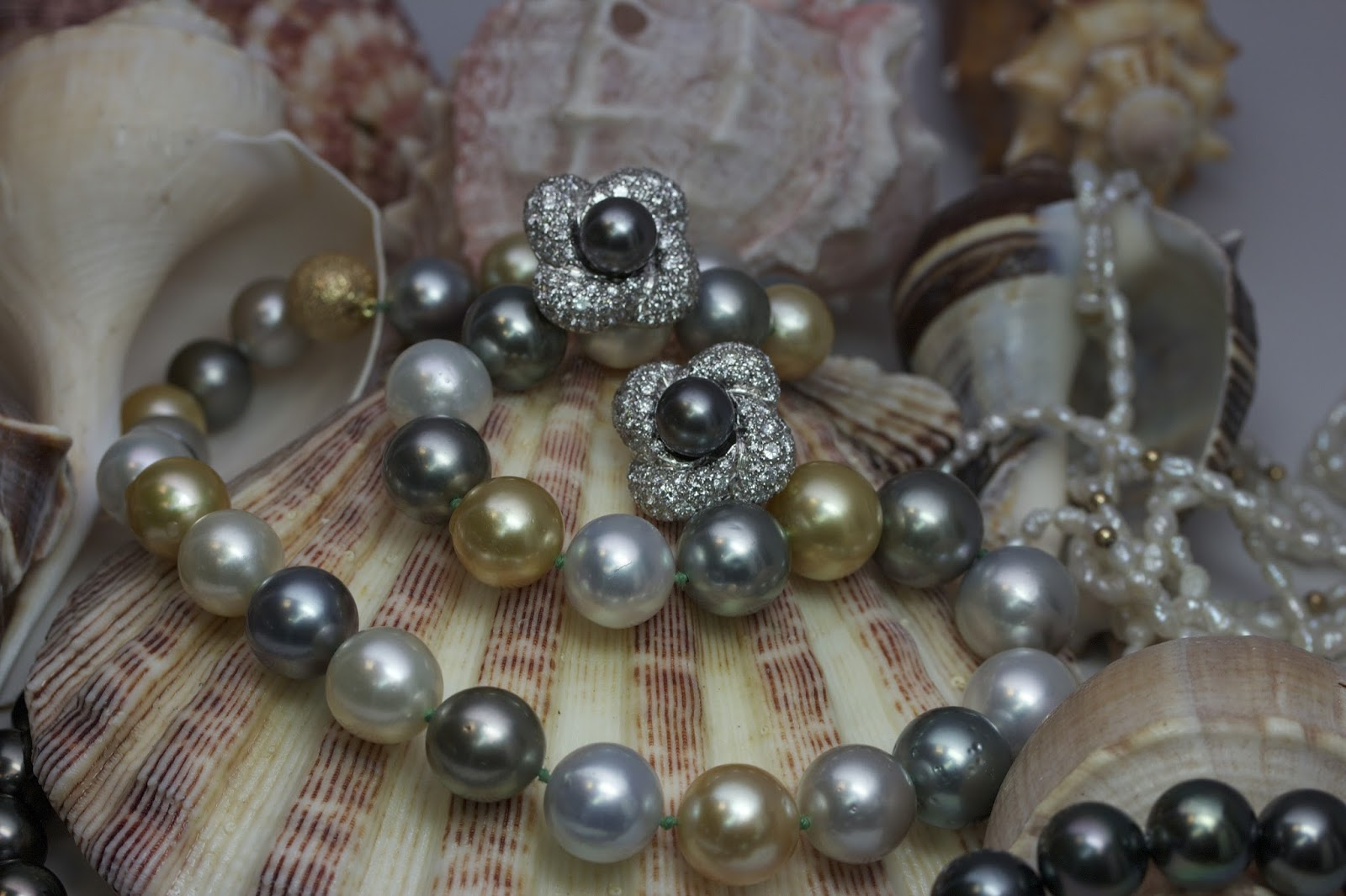 Mikimoto Petite Soleil Pearl, Best Jewelry Store Awardbest Jewelry Store In  Queens Ny, Bridal