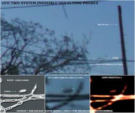 ACTIVIDAD UFO SOBRE CABLES ELECTRICOS