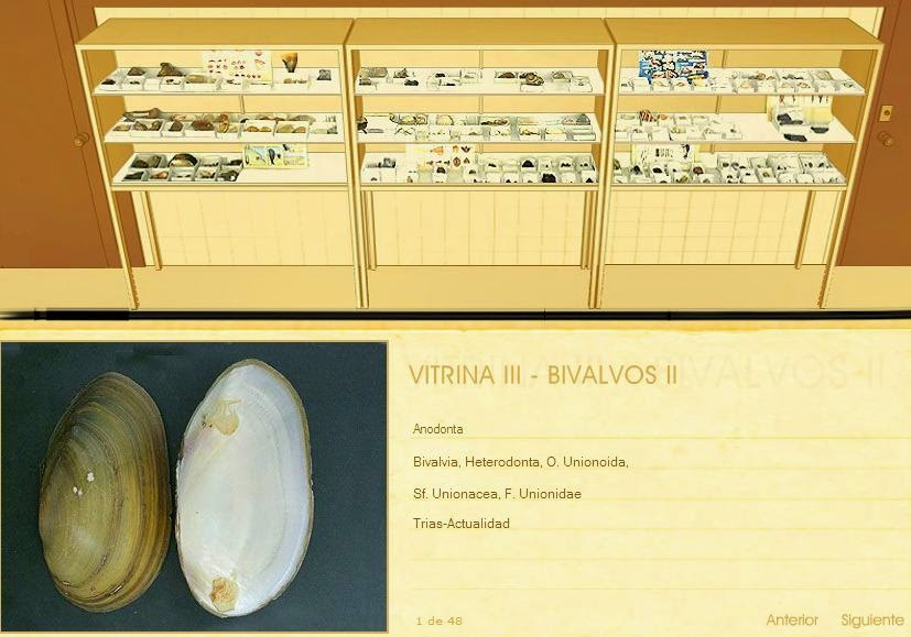Laboratorio virtual de Paleontología de la Universidad de Granada