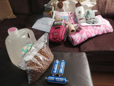 My disaster emergency bag with items for my dogs in case of evacuation
