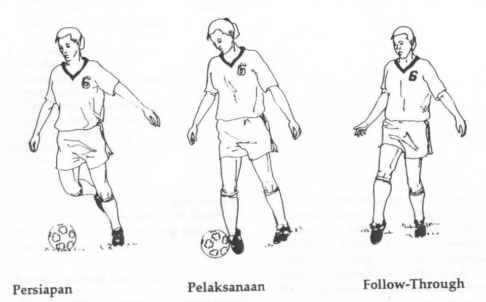 Teknik Dasar Sepak Bola  Share The Knownledge