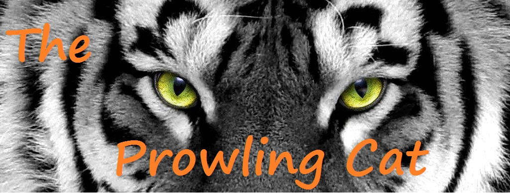 The Prowling Cat