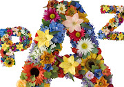 PARAGUAS POR LA PAZ paz flores