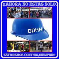 Observadores y Defensores de Derechos Humanos