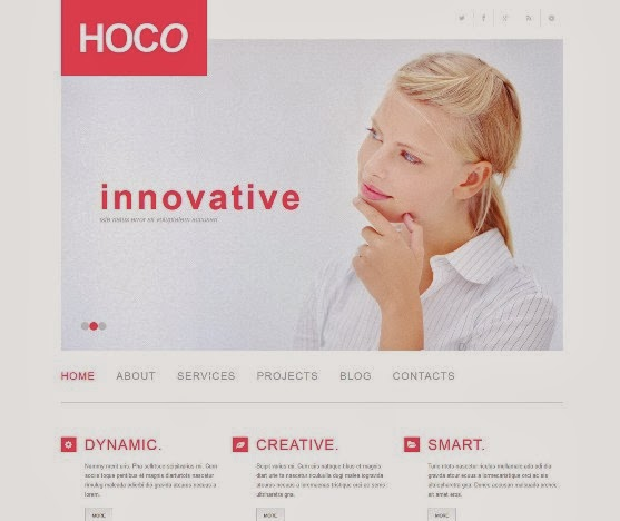 Hoco Responsive WordPress Business Theme