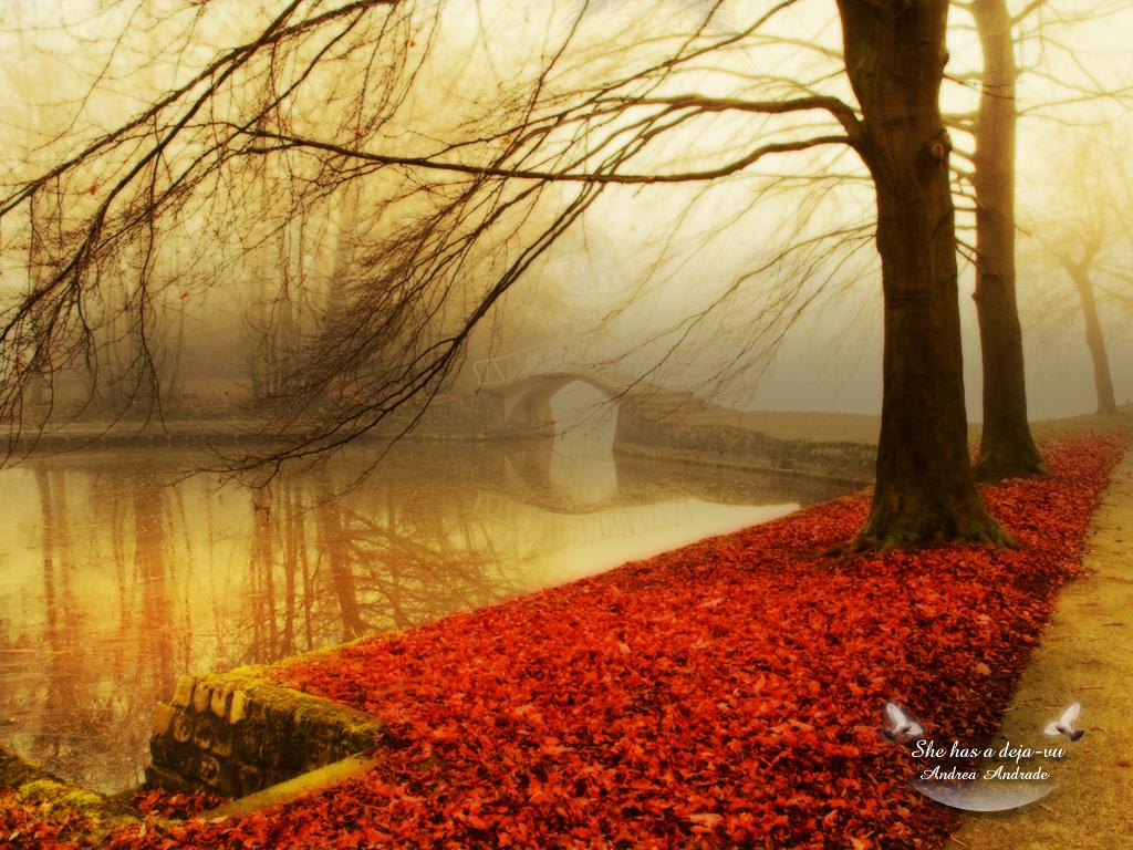 http://4.bp.blogspot.com/--TSqGYD0BQ0/Tj9dP0hNu8I/AAAAAAAAADk/F20wZL9bFAU/s1600/Autumn-wallpaper-autumn-9444951-1024-768.jpg