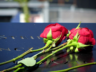 Some red roses a woman had placed on the memorial for family members she had lost.