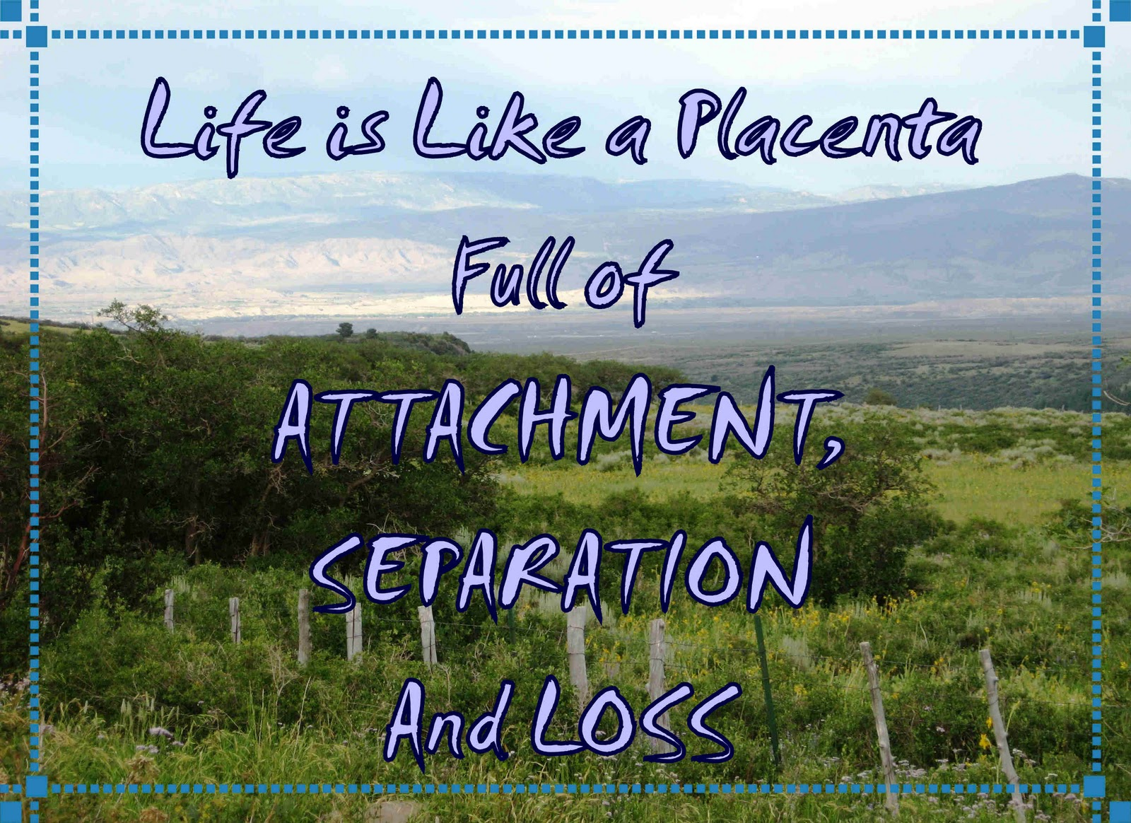 Life is like a placenta quote