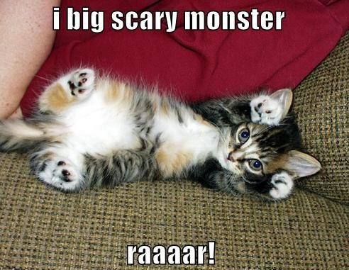 [Image: Funny_Cute_Kitten_.jpg]