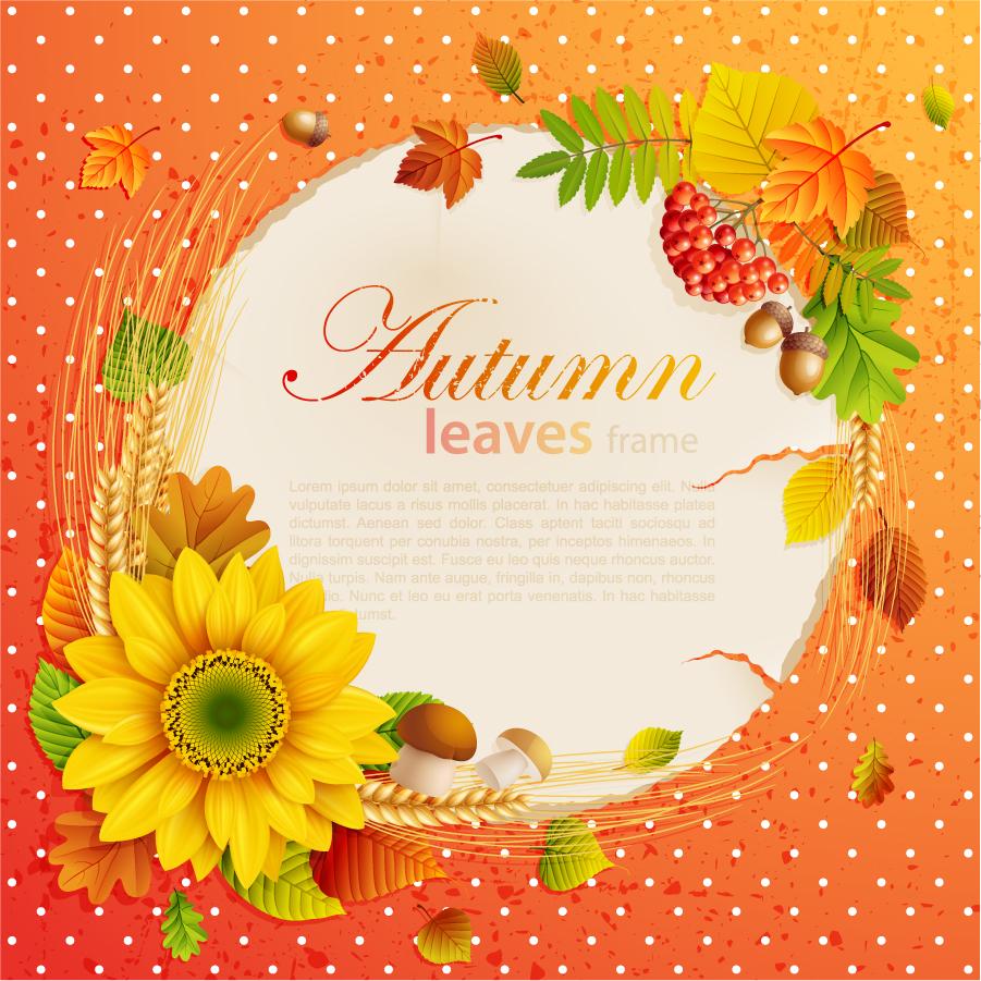 美しい落ち葉の秋色フレーム beautiful autumn leaves frame イラスト素材