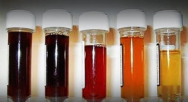 Obat Tradisional Kencing Berdarah