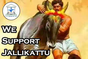 We Support Jallikattu
