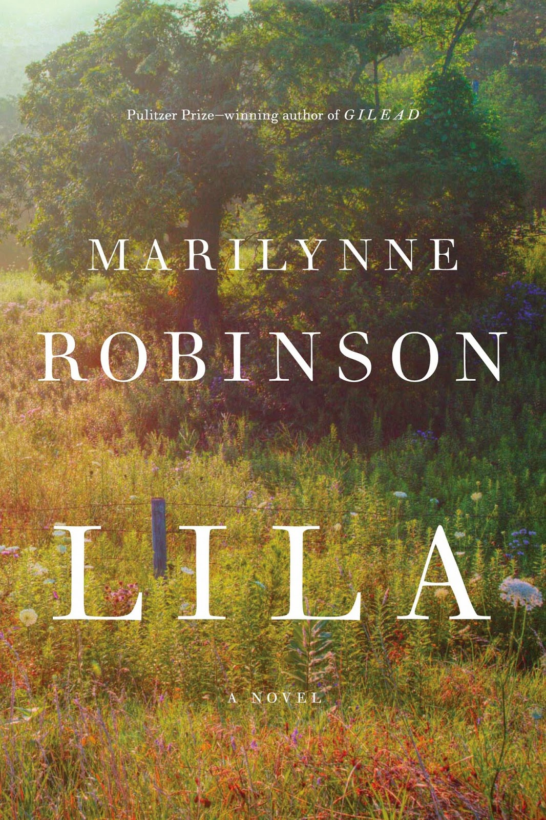 http://discover.halifaxpubliclibraries.ca/?q=title:lila%20author:robinson