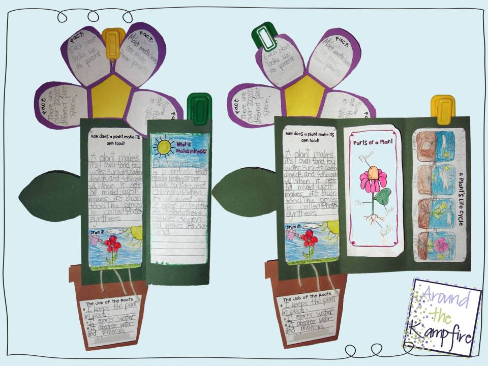 flower+foldable.jpg 960×720 pixels | School | Pinterest