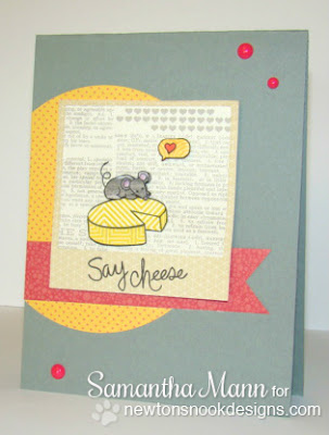 Say Cheese card using Newton's Nook Designs Stamps