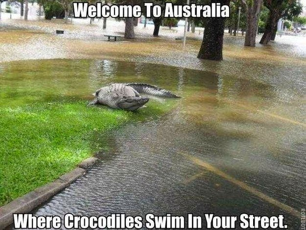 enhanced buzz 15388 1394068568 18 Fotos que provam que a Austrália é um lugar louco