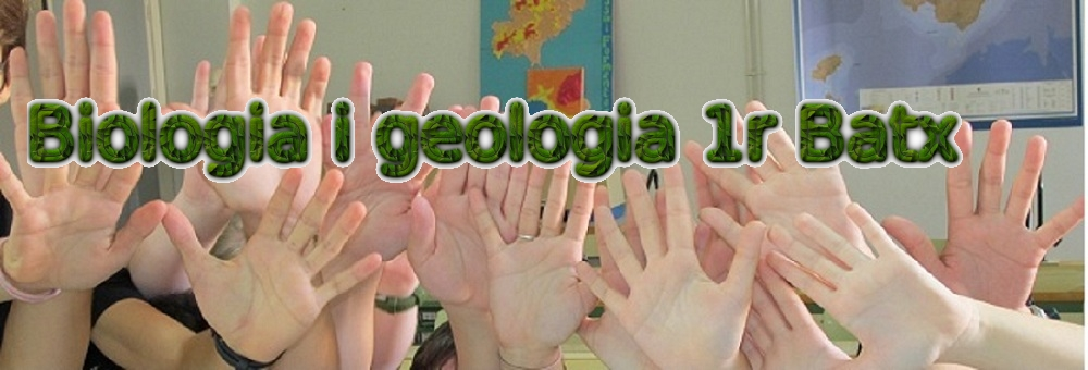 Biologia i geologia 1r batx