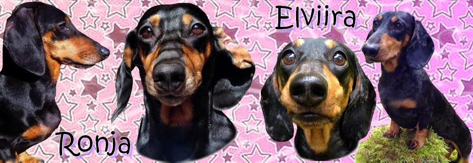 Symbolic Jubilee ja Edna