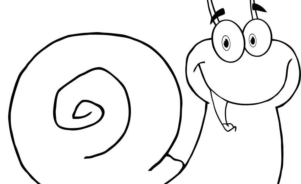 learning ideas - grades k-8  how to draw mollusks