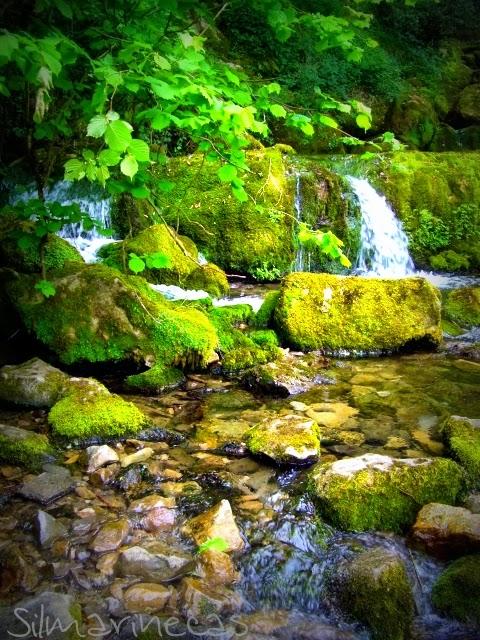 Nacimiento del rio Cadagua