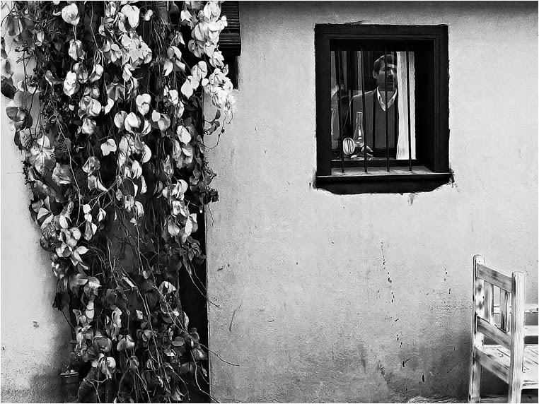 amateur photographers, Best Photo of the Day in Emphoka by Ufuk Tozelik, https://flic.kr/p/p7ayWY