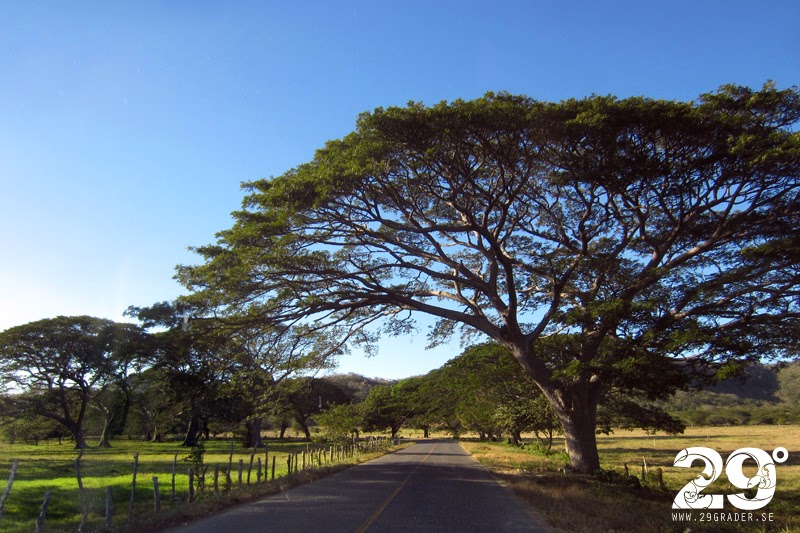 Budget Car Rental Nicaragua