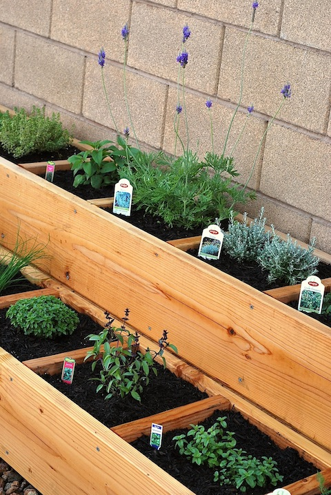 Herb Garden Planter Ideas Part - 17: The Cottage Market