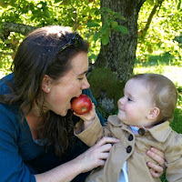 Apple PIcking with babies_New England Fall Events