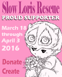 Slow Loris Rescue Event