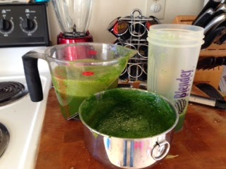 juice recipes by creative and crafty living