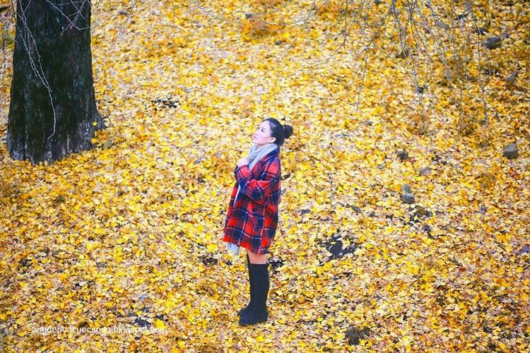 Thiếu nữ dao phố mùa thu 10