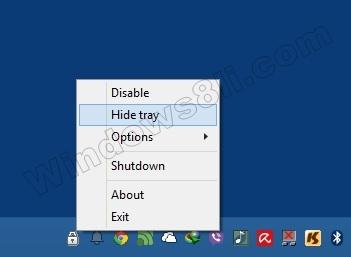 ShutdownGuard