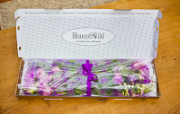 bloom and wild, flowers through the letterbox