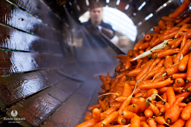 carrots_being_washed_middle_granville_vegetable_farmers_markets by sarah parisi for this beautiful life