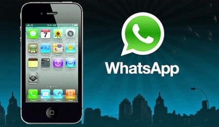 Whatsapp  al tel 2288608447